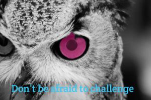 Eye-Owl-(Dont be afraid to challenge) B&W-Schind